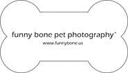 Funny-Bone-Pet-Photography